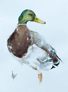 Andrzej Rabiega - Paintings for Sale Watercolor Bird, Watercolor Paintings, Watercolours, Paintings For Sale, Birds, Artwork, Artist, Projects, Log Projects