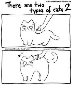 Cat Comics Hilarious Comics That Capture My Life With Two Cheeky Cats Life Comics, Cat Comics, Funny Comics, Cute Funny Animals, Cute Cats, Funny Cats, Cat Memes, Funny Memes, Hilarious