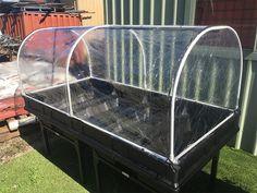Diy Garden Bed, Garden Boxes, Raised Garden Beds, Raised Beds, Pvc Greenhouse, Greenhouse Cover, Greenhouse Gardening, Pvc Canopy, Trough Planters