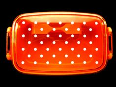 Japanese Bento Box With Divider Polka Dots CLEAR ORANGE