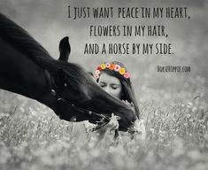 I just want peace in my heart. - Horses Funny - Funny Horse Meme - - I just want peace in my heart. The post I just want peace in my heart. appeared first on Gag Dad. Horse Meme, Funny Horses, Cute Horses, Pretty Horses, Beautiful Horses, Funny Horse Quotes, Horse Girl Quotes, Horse Sayings, Horse Horse