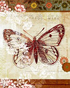Vintage butterfly card.