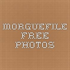 morgueFile free photos