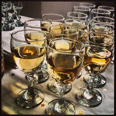 Víno teklo proudem, já se věnoval nedalekým zásobám džusu