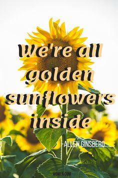 perfect caption if you have sunflowers in your photo :) Flower Captions For Instagram, Insta Captions For Selfies, Cute Quotes For Instagram, Cute Captions, Instagram Captions For Selfies, Instagram Funny, Picture Captions, Instagram Feed, Caption For Profile Pic