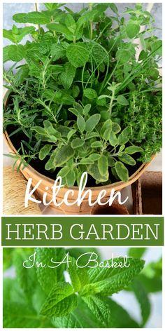 Kitchen Herb Garden Basket