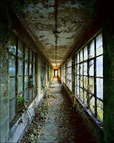 Stephen Wilkes photographed a side of Ellis Island that no one sees. Ellis Island: Ghosts of Freedom documents weather-beaten remnants of the immigration hub's abandoned buildings. Abandoned Buildings, Abandoned Asylums, Old Buildings, Abandoned Places, Derelict Places, Abandoned Castles, Abandoned Plantations, Ellis Island, Magic Places