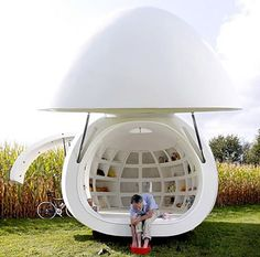The final design and functioning of this egg shaped structure.
