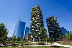 Discovered the incredible Bosco Verticale: a skyscraper which is a living forest! What an incredible piece of architecture located in Milan! By Bios Urn Vertical Forest, Milan Design, Urban Farming, Ecology, Skyscraper, Street Art, City, Instagram, Photos