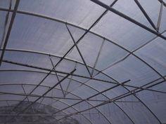 Commercial Greenhouse, Utility Pole, Louvre, Building, Buildings, Construction