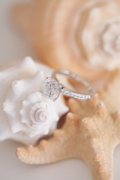 #Engagement Ring | Photography: Kelly Kollar