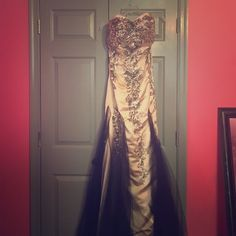 Never Worn Gown Beautiful tan silver gown with very long black see through train. Dresses Prom