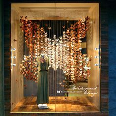 Allen, TX Anthropologie window - Earth Day display bringing attention to plight of monarch butterfly.