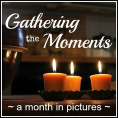 {Gathering the Moments}  ~ a month in pictures ~