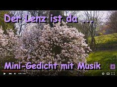 FreyaGlücksweg161 ☼ Blühender Magnolienbaum ☼ Magnolie blüht / blühend ☼... #Kurzgedicht #Lenz #Magnolienbaum #Magnolie #blüht #blühend #Blütenpracht #Vers #blühenderBaum #Baum #Sonne #Frühlingsgedicht #Frühling #Frühlings_Gedicht #Blüten #Magnolienblüten #Magnolienblüte  #Gedicht #Gedichte #Lyrik #Poesie #Verse #Reime #Poem #Poetry #Lyric #Sprüche #Video #Videos #Video_Clip #Video_Clips #YouTube_Video #YouTubeVideo #YouTube_Videos #YouTubeVideos #VideoClip #Gedicht_Video #SmallYouTuber