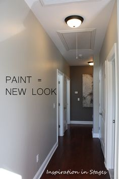 Revere Pewter and Sparrow (Benjamin Moore paint colors)
