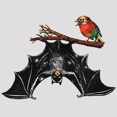 chistes de batman y robin - Buscar con Google