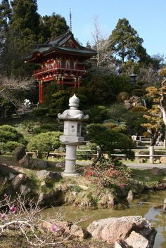 Japanese Tea Garden, Golden Gate Park - one of the coolest, most beautiful places...EVER!!!
