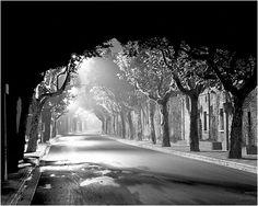 Light through Black and White