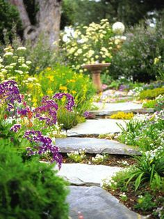 lovely meandering flagstone path