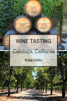 Wine Tasting in Calistoga, California To learn more about the #NapaValley Wine Trolley and our tours click here: https://www.napavalleywinetrolley.com/