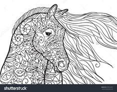 Hand Drawn Coloring Pages With Horse's Head, Illustration For