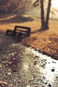 Bench in the rain, waiting for someone as the sun comes out...