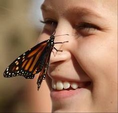 Monarchs capture the imagination of 7th-grade science class in Arlington Heights. Mackenzie Kamysz is visited by the newly released monarch butterfly.