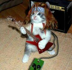 Gosto mesmo é de Rock!