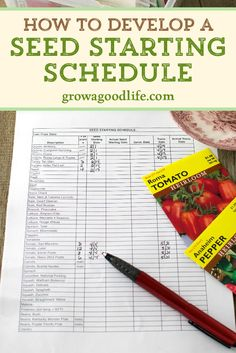 garden care schedule A seed-starting schedule provides a guideline of when to sow seeds and when to transplant seedlings to your vegetable garden. Read on to see how to develop a seed starting schedule for your unique growing area.