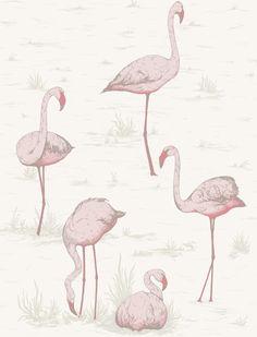 Cole & Son Wallpaper 95/8045.CS Flamingos Pink/White