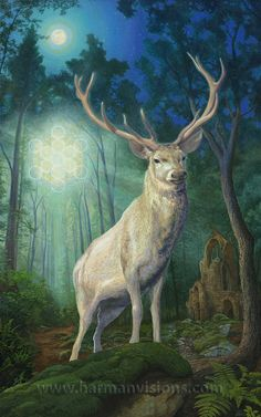 The Oak and the Antler ~ Spirit of the Forest - The White Stag