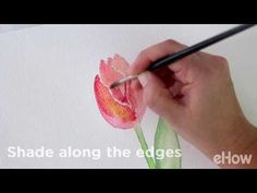 How to Paint a Tulip in Watercolor - YouTube