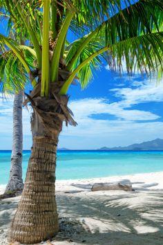 ** Malcapuya Island, Coron, Philippines by Efired