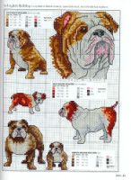 Gallery.ru / Фото #20 - Picture Your Pet in Cross Stitch - patrizia61