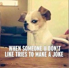 When Someone You Hate Tells A Joke