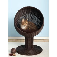 For Richard & Zoey: The Refined Feline Kitty Ball Bed in Espresso