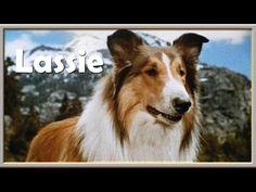 Lassie - YouTube