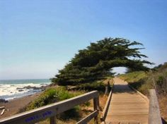 The great boardwalk at Moonstone Beach in Cambria