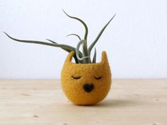 Felt succulent planter