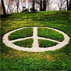 Kent State University Peace - the site/ event from Crosby Stills & Nash song Hippie Life, Hippie Art, Peace Of Mind, Peace And Love, Allison Krause, We Are Golden, Peace Symbols, Kent State University, Give Peace A Chance