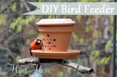 DIY Bird Feeder From A Flower Pot! I love this DIY bird feeder from a flower pot and a couple of terra cotta saucers!
