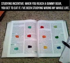 Funny pictures about Studying Incentive. Oh, and cool pics about Studying Incentive. Also, Studying Incentive. Thats The Way, Gummy Bears, School Hacks, School Tips, College Life, College Humor, College Success, College Years, Dorm Life