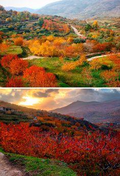 Paisajes de otoño en el Valle del Jerte http://soprodevaje.blogspot.com.es/ OTOÑADA en el Valle del Jerte