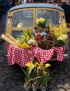 going for a picnic
