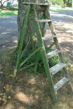 wonderful french antique ladder  old step ladder by funknjunkinc
