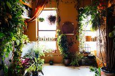 Model Summer Rayne Oakes, plant-filled apartments, Model Summer Rayne Oakes…