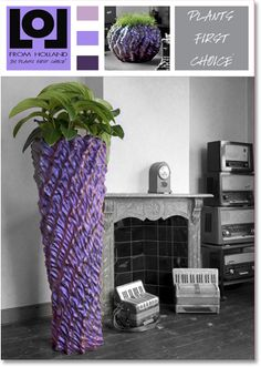 Lol From Holland A brand new concept now available in Canada and the USA LoL Madera cm Colorstorm Tramontana soft feel Holland, Planters, Lol, Concept, Vase, Canada, Green, Crib, Google Search