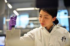 Un equipo de investigadores ha desarrollado un sistema basado en ultrasonido que puede controlar de forma no invasiva y remota los procesos genéticos en las...