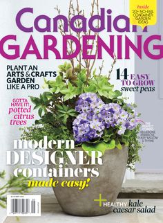 Modern designer containers made easy! no fail container garden ideas; plant an arts and crafts garden like a pro; 14 easy to grow sweet peas; healthy kale ceasar salad and more! Canadian Gardening May 2014 {PHOTO: Ashley Capp} Healthy Caesar Salad, Ceasar Salad, Growing Sweet Peas, Easy Garden, Garden Ideas, Citrus Trees, Container Gardening, Make It Simple, Arts And Crafts
